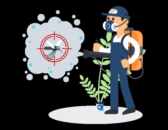 Professional Pest Control Birkdale